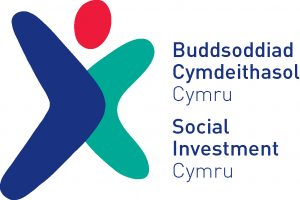 Social Investment Fund logo