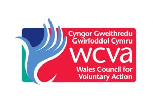 Cyngor Gweithredu Gwirfoddol Cymru