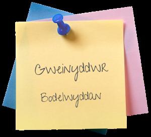 Gweinyddwr