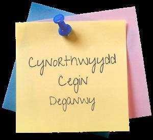Cynorthwyydd Cegin